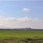 Il sito di Tell Gomel durante la primavera